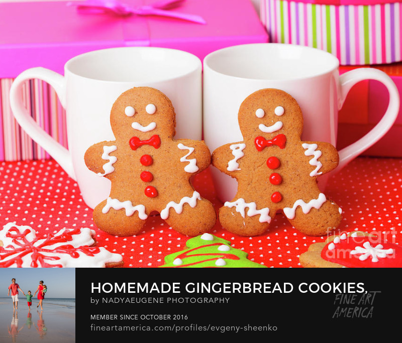 Gingerbread cookies by Nadya&Eugene