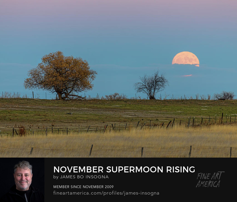 November Supermoon Rising Photography Prints