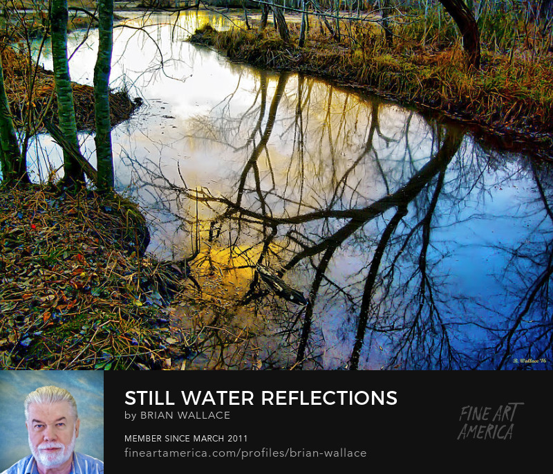 Still Water Reflections by Brian Wallace