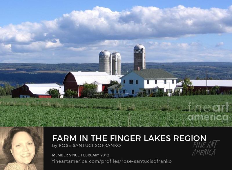 Farm in the Finger Lakes Region of New York State Sell Art Online
