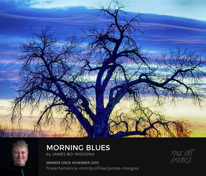 Morning Blues Art Online