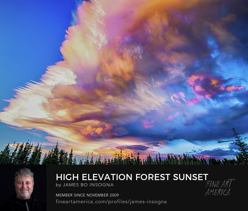 High Elevation Forest Sunset Sky Timed Stack Art Prints
