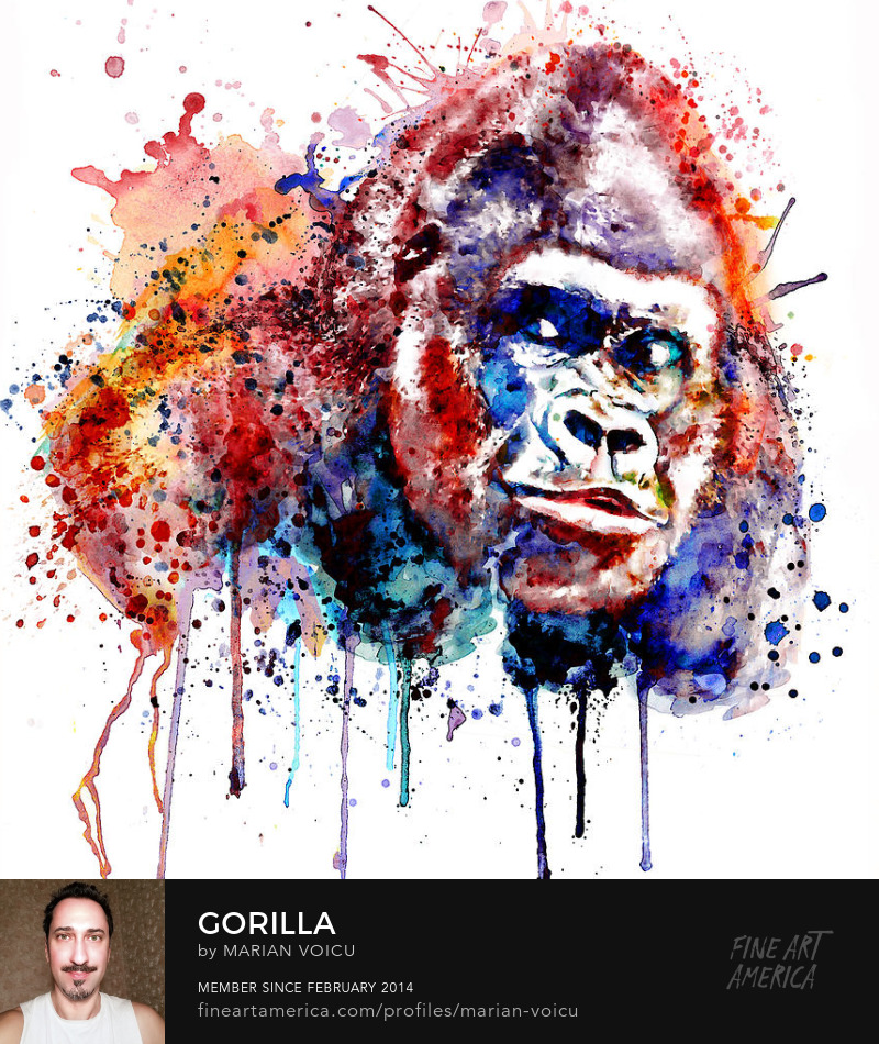Watercolor portrait of a gorilla