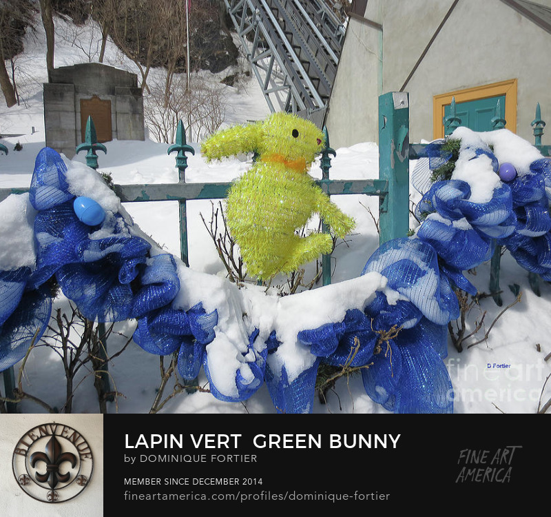 "Lapin vert / Green Bunny is a photograph by Dominique Fortier which was uploaded on March 2nd, 2017. Photography Prints. I shot this Easter bunny photo in one of the oldest streets of Quebec city (Canada), Rue Sous-le-Fort Street, during Winter, after a snowfall in the Easter time, close to the outdoor elevator that people/tourists (very touristic area) can take to climb the hill leading (instead of walking) to the Upper Town. I am always delighted to see the streets and city decorations related to the big events of the year calendar. Individuals, storekeepers, governmental touristic departments vie to outdo each other in creativity. Dominique Fortier has created this artwork suitable for 7"" x 5"" Greeting Cards and Prints up to 60.000"" x 45.000"". Buy your iPhone or Samsung Galaxy case as well as BEACH TOWELS and other apparels featuring this art at: http://dominique-fortier.pixels.com/ Copyright Dominique Fortier, 2017. All rights reserved. Featured on the Homepage of: ""Wisconsin Flowers and Scenery"" (03/23/2017) ""Imagination-Artistry-Creativity"" (03/19/2017) ""Artists Cards Fine Art Greeting Cards"" (03/03/2017) ""Pictures for Present"" (03/02/2017) ""Images That Excite You!"" (03/02/2017). Tags easter easter bunny green bunny animal blue ribbon ribbon garland fence snow eggs easter eggs rabbit hare spring springtime purple egg blue egg petting tenderness quebec city. Buy here on this fineartamerica page, or shop and buy more of my products like round beach towels, beach towels, beach sheets, weekender tote bags, cary-all pouches, portable battery chargers etc., at: dominique-fortier.pixels.com. For Canadian and Quebec customers: There is a Print-On-Demand Manufacturing Location in TORONTO, Canada, that delivers the following products (prints, posters, canvas prints, framed prints) throughout Canada, so you save on shipping costs (you see your order in Canadian money), and it speeds up delivery times. To Quebec and/or Francophone customers/aficionados/boutique owners GREETING CARD BUYERS/RETAILERS: Almost all of my artworks come bilingual in the following format: French Title / English Title (the actual 'Artwork Name' that will appear printed in bold face at the back of each Greeting Card). The exact correctly spelled/written title in French, that is WITHOUT CAPS ALL OVER (e.g. articles, etc.), can be seen under the thumbnails in the 'Images' tab/section. So don't hesitate to buy and offer my cards, as they are FREE of mistakes (I am a French Editor, and I worked several years in a bilingual publishing environment (English-French / French-English) as an in-house French Editor at the Canadian Museum of History (former Canadian Museum of Civilization) - the most visited museum in Canada -, located in the Ottawa region, CANADA). Copyright: All rights reserved, 2014 THE FINE ART AMERICA WATERMARK WILL NOT APPEAR ON ANY PURCHASED PRODUCT. Welcome on my page. I am marvelled at the smallest beautiful thing I see. First, my eyes see, simply. Then it progresses (sometimes quickly, sometimes slowly) deeply into my soul, touches me, fills me with wonder, and makes me react. It creates memories and feelings that make my life happy. I began several years ago to paint watercolor, this medium being convenient while travelling, as well as shooting photos. My sites: To see, shop and buy my extra products like round beach towels, beach towels, beach sheets, weekender tote bags, cary-all pouches, portable battery chargers, go to: dominique-fortier.pixels.com http://www.revisionpro.ca/blogue Follow me on Twitter: https://twitter.com/LautLautre Follow me on Pinterest: https://www.pinterest.com/ImpaLautre/ Copyright Notice: All images produced by the artist are original, published, copyrighted, and protected by U.S. and international copyright laws, all rights reserved. No image is or should be part of public domain. The images may not be copied, reproduced, manipulated or used in any way, without written permission of (copyright) Dominique Fortier. Any unauthorized usage will be prosecuted to the full extent of U.S. Copyright Law. Please ask permission before using or recreating my work as all is under the guidance of a legal advisor. No image is from a royalty free website or file. Any original image on this website obtained from other artists/photographers meets or exceeds 100 years and has been given proper credit to showcase their talent."