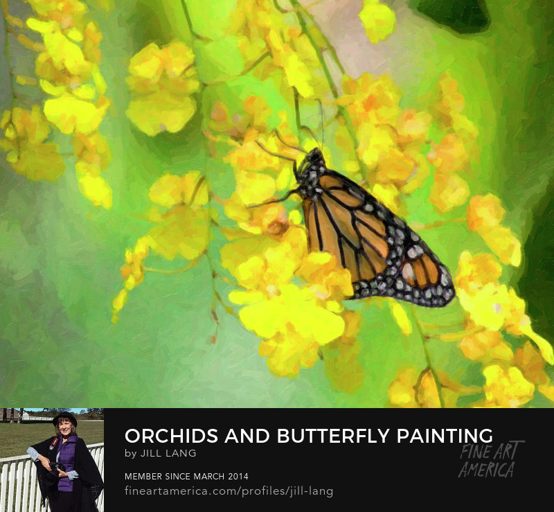 Monarch butterfly on yellow orchids