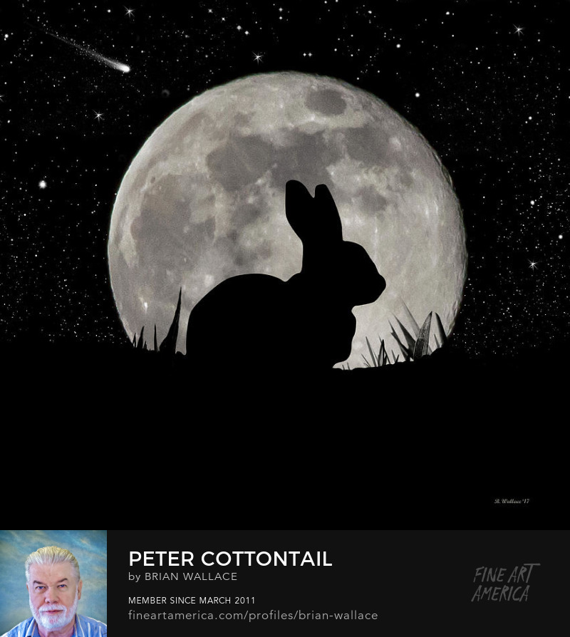 Peter Cottontail by Brian Wallace