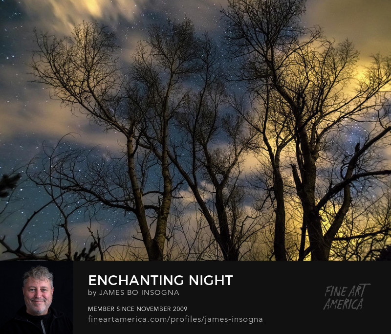 Enchanting Night Art Online