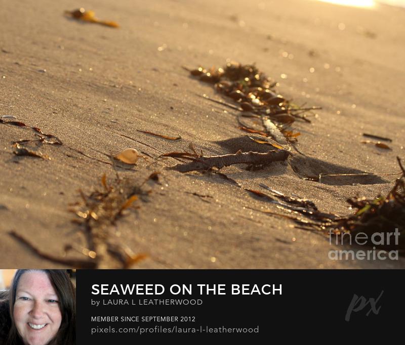 Seaweed Beach Bag