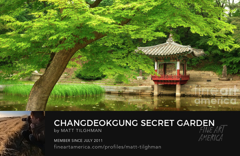 Changdeokgung Secret Garden Photography Prints