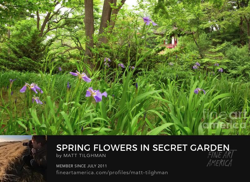 Spring in Secret Garden Art Online