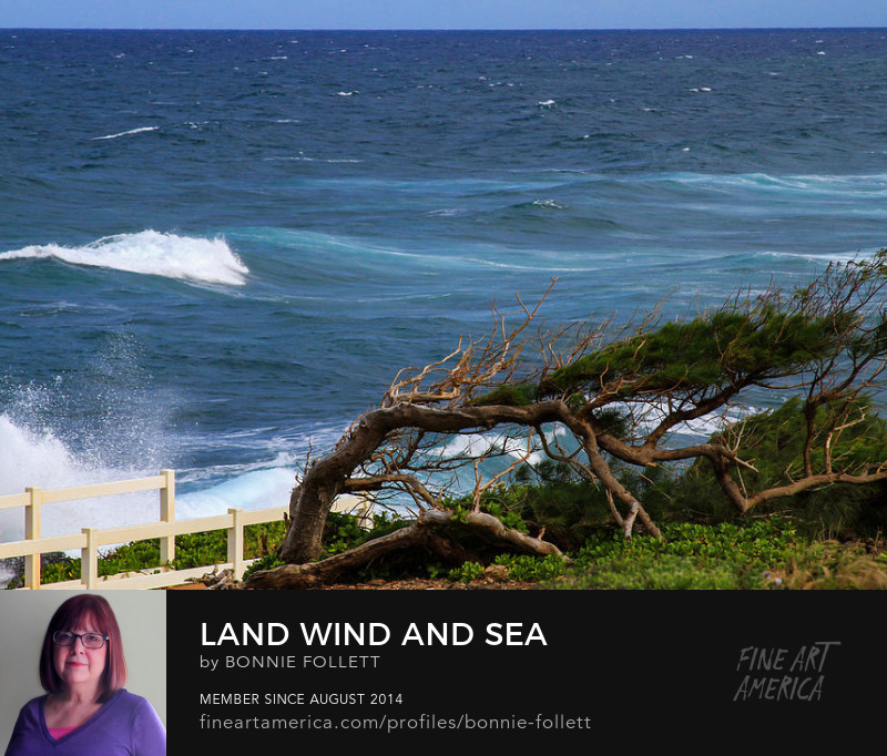 Land Wind and Sea on Kauai