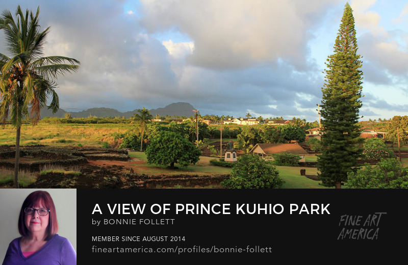 A View of Prince Kuhio Park