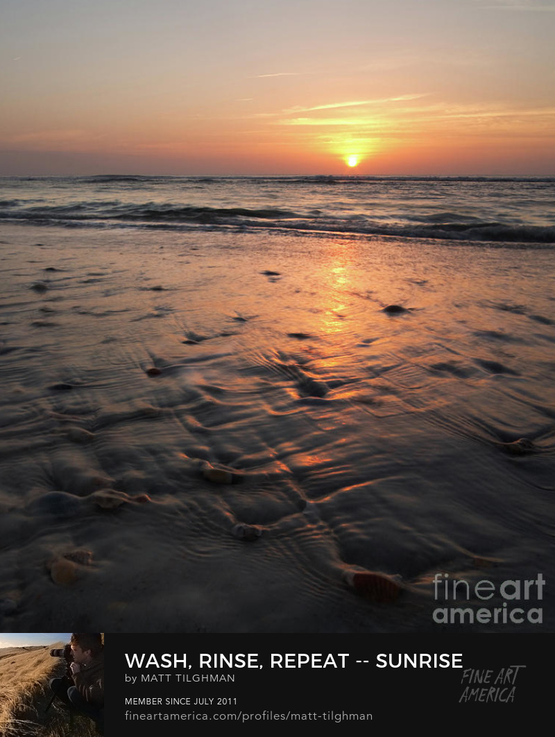 Beach Art Online