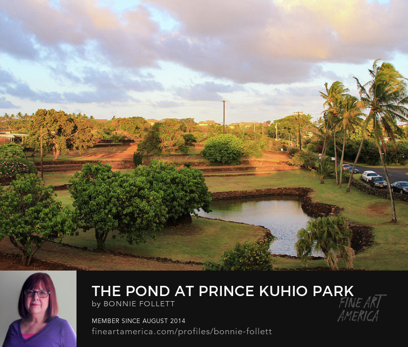 The Pond at Prince Kuhio Park