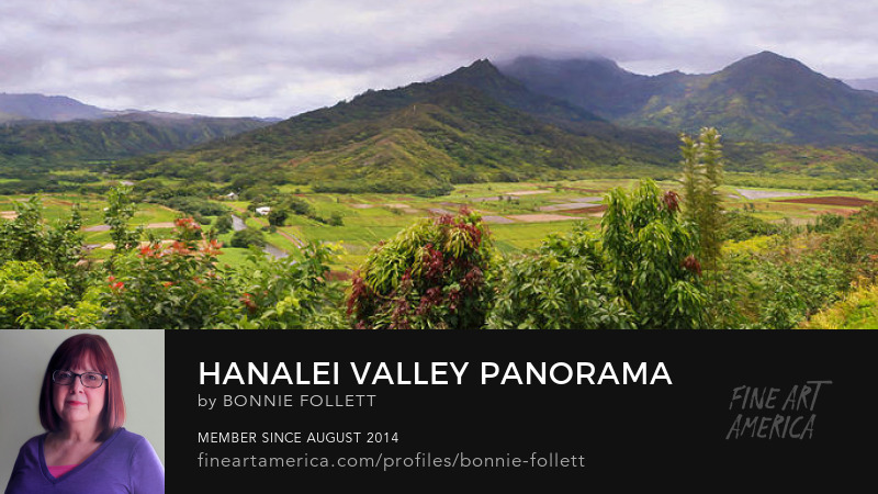 Hanalei Valley Panorama