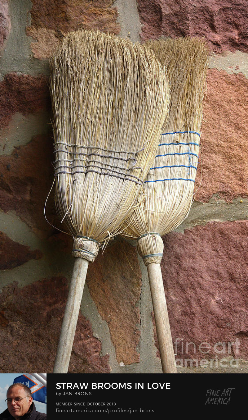 Art Print - Straw brooms in love
