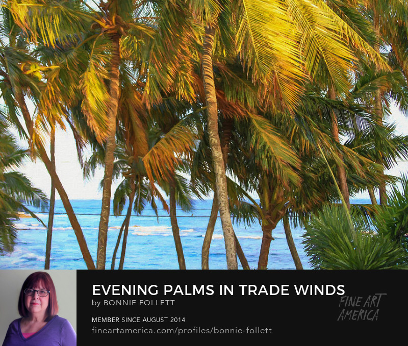 Evening Palms in Trade Winds
