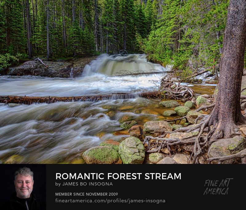 Romantic Forest Stream Art Prints