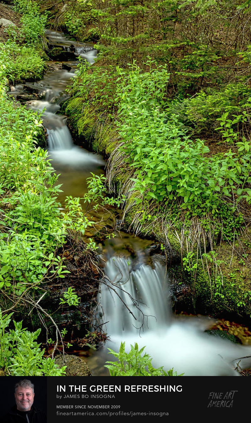 Refreshing Green Wilderness Waterfalls Photography Prints