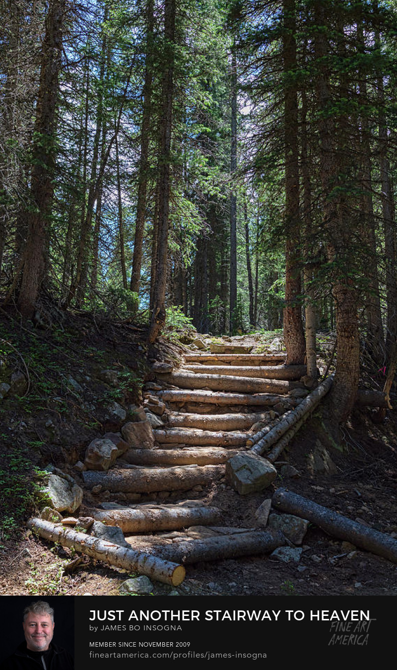 Natural Stairs to Heaven Photography Prints