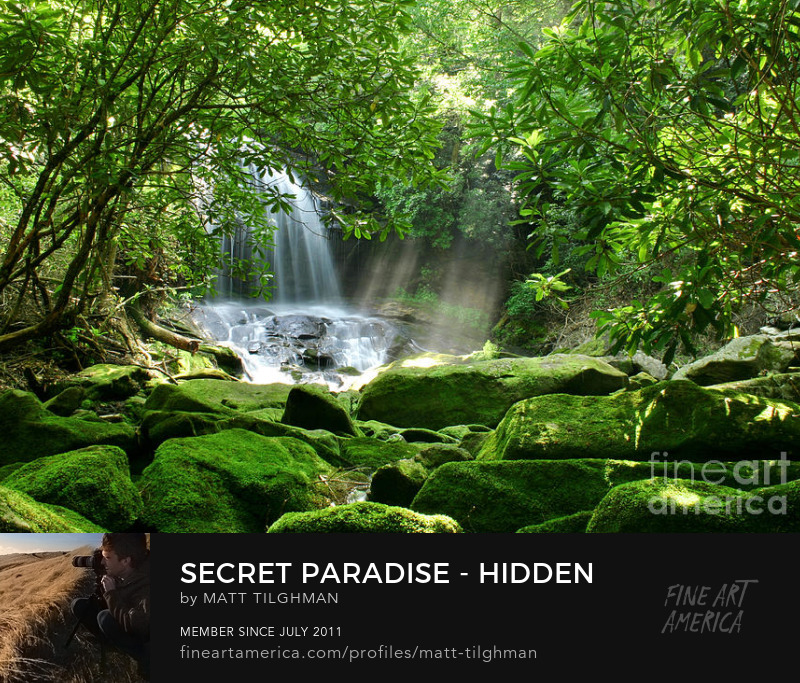 Hidden Waterfall Art Prints
