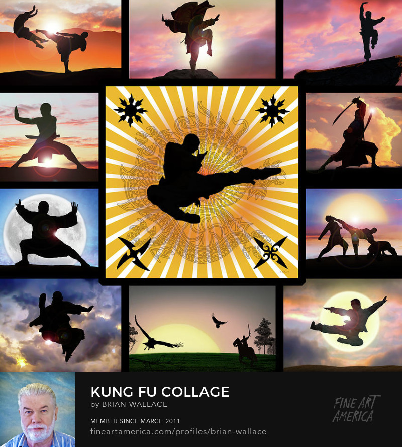 Kung Fu Collage by Brian Wallace