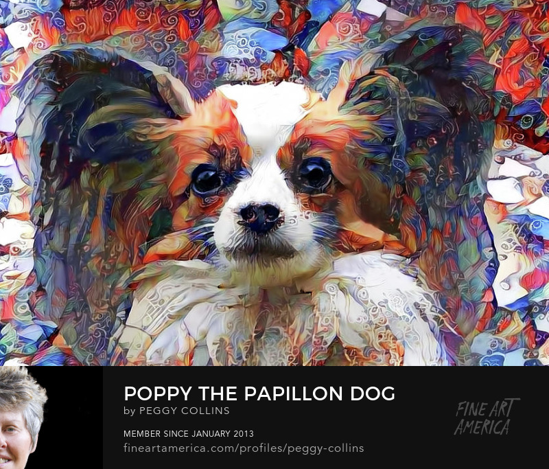 papillon dog art