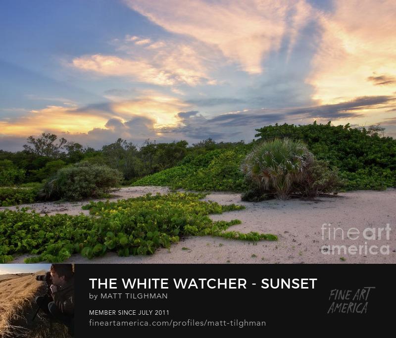 Mizell-Johnson Sunset Florida Art