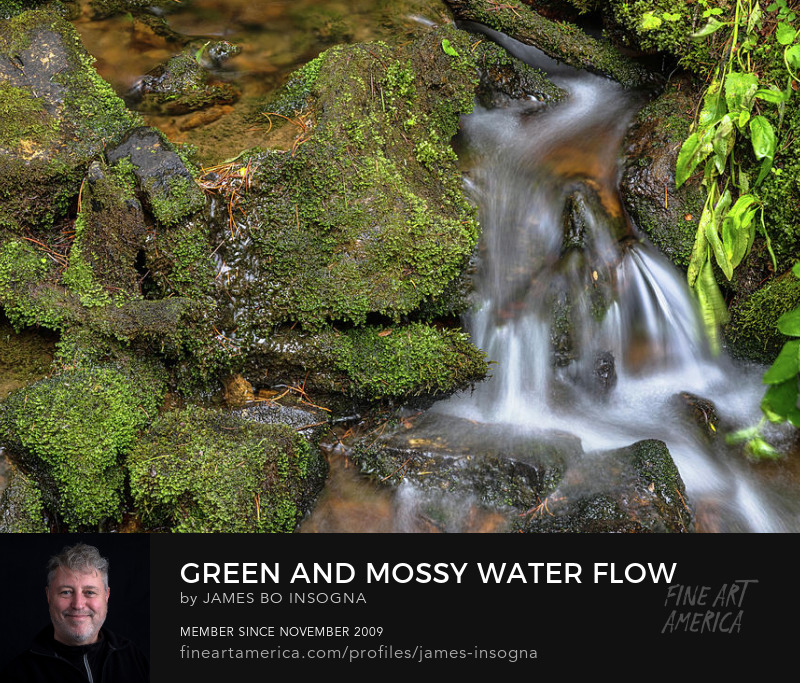 Green And Mossy Water Flow Art Prints