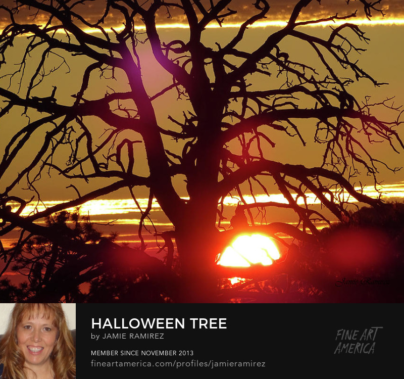 Halloween Tree Photography by Jamie Ramirez