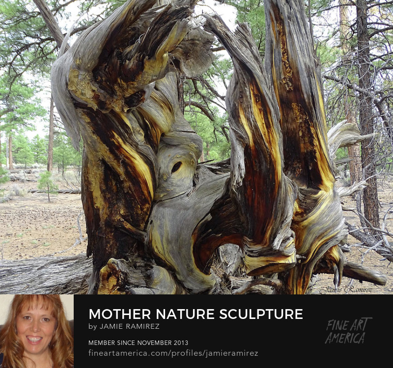 Jamie Ramirez Photography Mother Nature Sculpture Sell Art Online