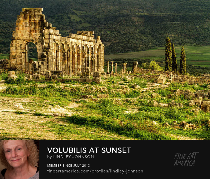 volubilis at sunset by lindley johnson