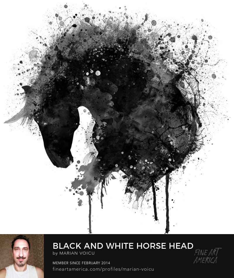 Black and white watercolor silhouette of a horse head