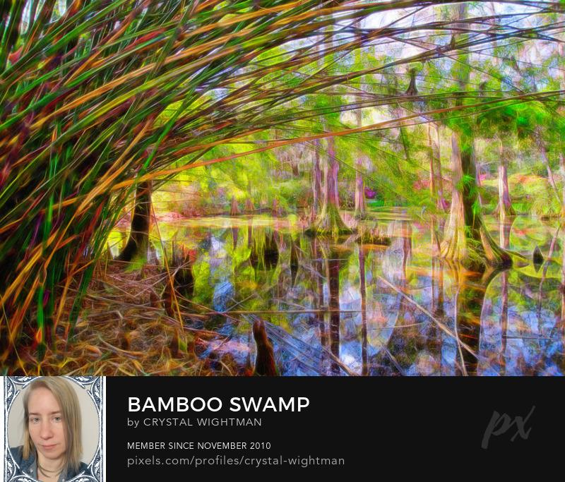 A beautiful South Carolina landscape with Chinese bamboo.