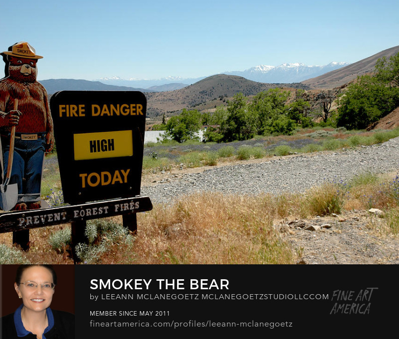 McLaneGoetzStudioLLC.com Smokey the Bear Nevada