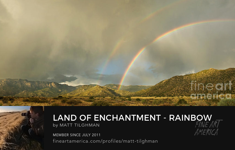 Land of Enchantment Art Online
