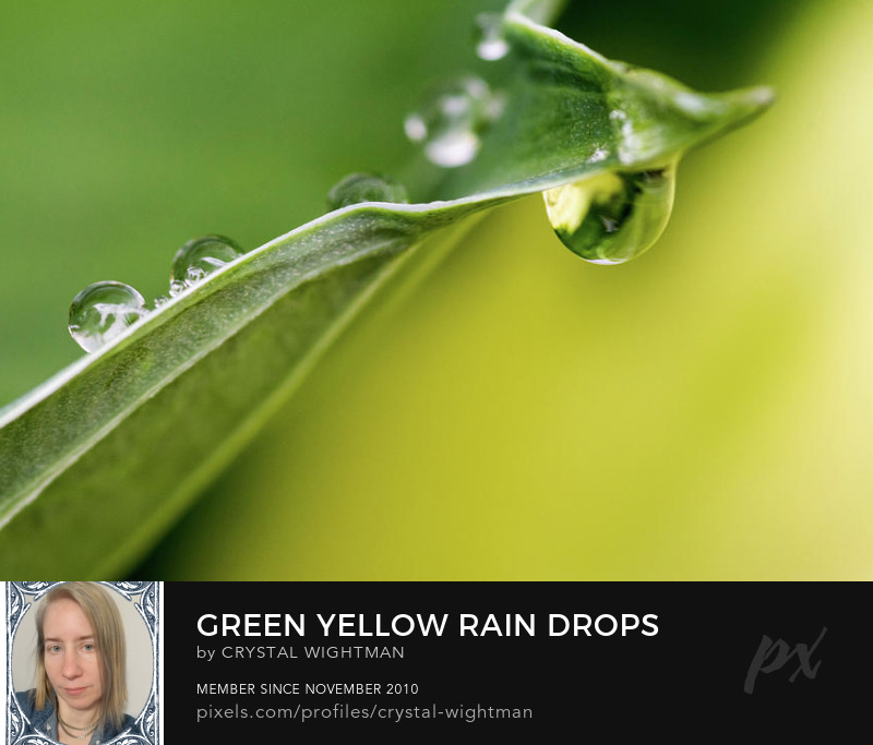 Green and yellow water drops