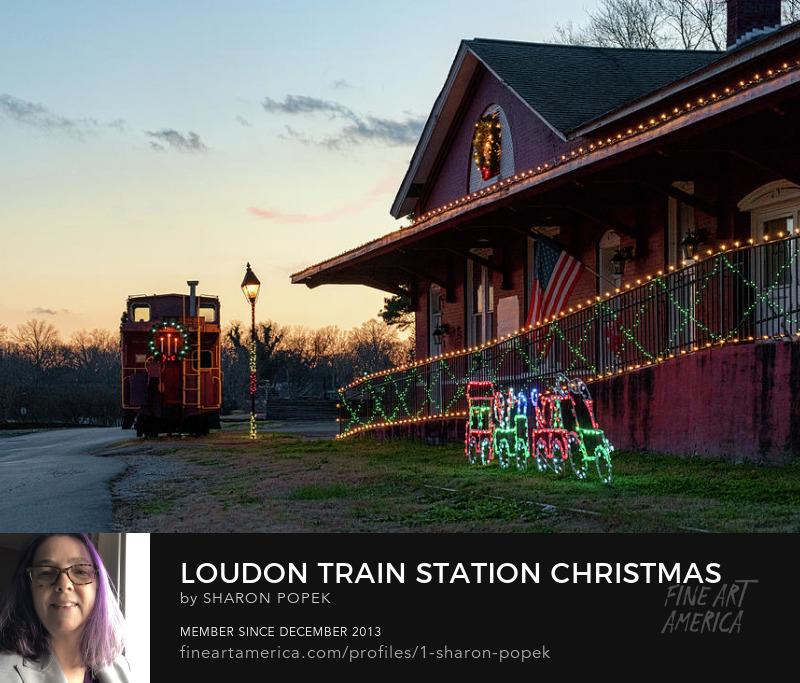train station art Photography Prints