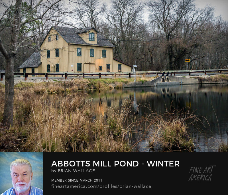 Abbotts Mill Pond - Winter by Brian Wallace
