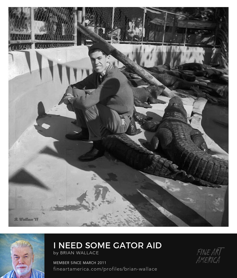 I Need Some Gator Aid by Brian Wallace