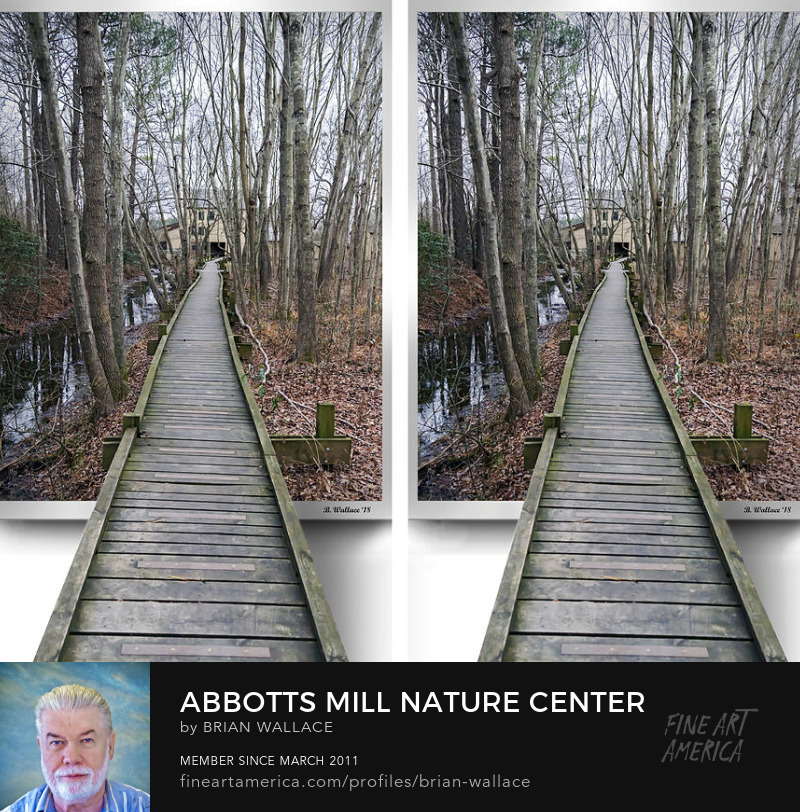 Abbotts Mill Nature Center Elevated Trail - OOF by Brian Wallace