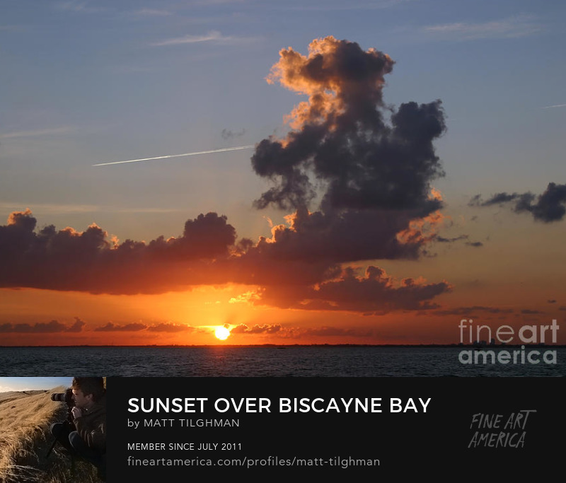 Sunset over Biscayne Bay Art Prints