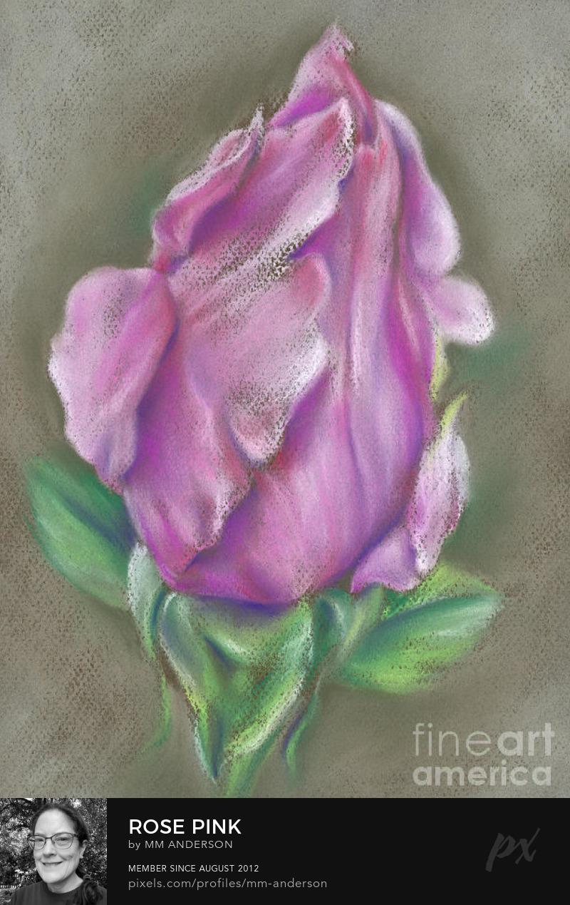 Rose Pink art prints for sale