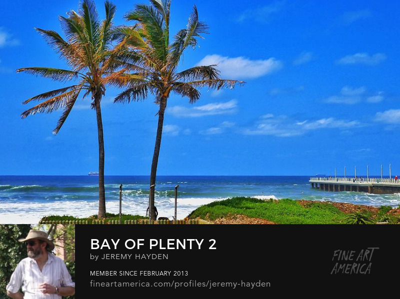 Bay of Plenty - Durban - Art Prints