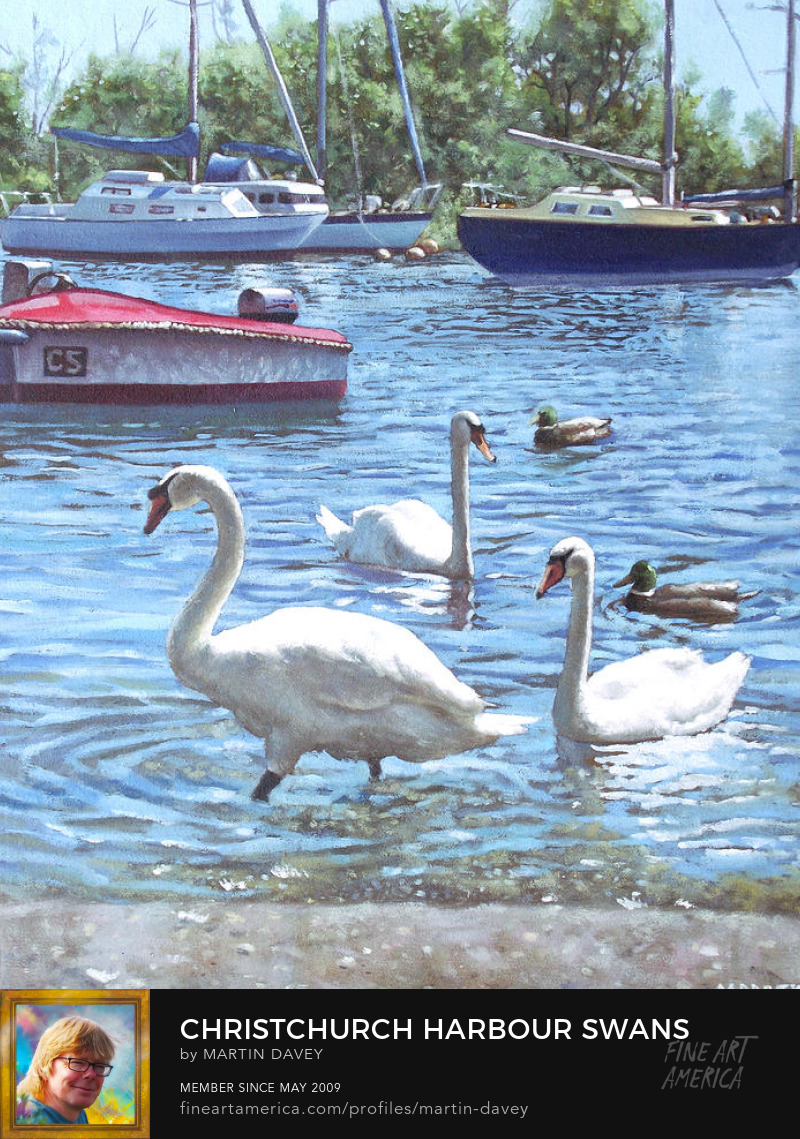 Christchurch Harbour Swans And Boats-oil painting