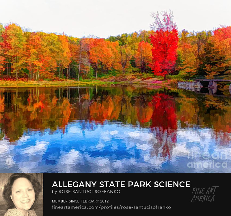 Allegany State Park Science Lake Abstract Watercolor Effect Canvas Art