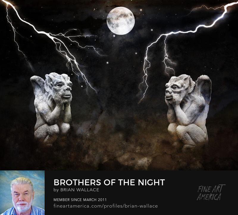 Brothers Of The Night by Brian Wallace