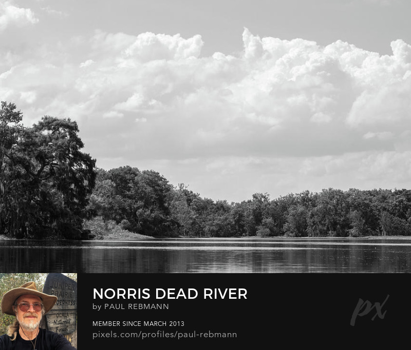 View online purchase options for Norris Dead River by Paul Rebmann