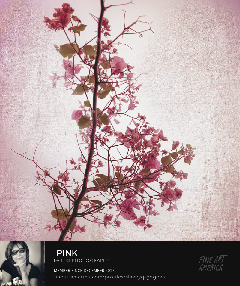 pink flowers Japanese style Flo Photography Art Prints