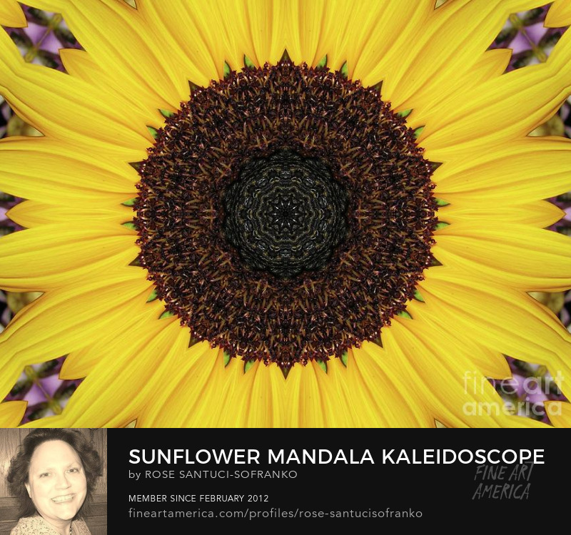 Sunflower Mandala Kaleidoscope Abstract 1 Wall Art